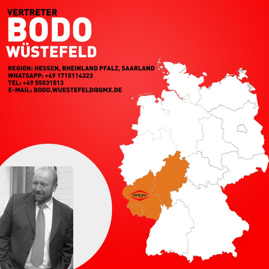 Vertreter Bodo Wüstenfeld 1-1